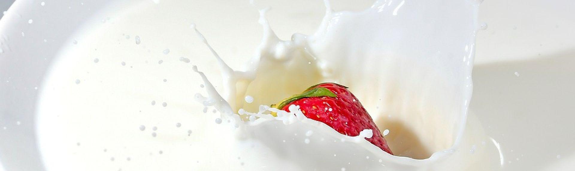 Органическая еда: что это такое и чем такой рацион полезен для женского здоровья
